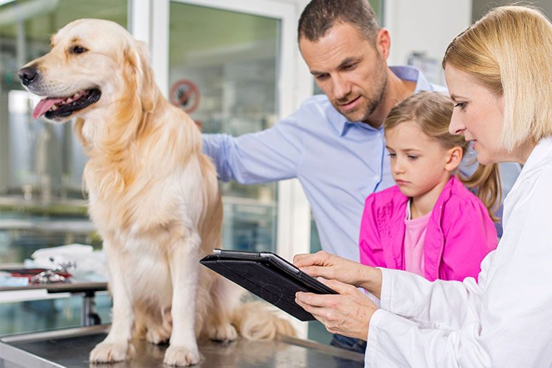 Veterinary Compounding Pharmacy Pennsylvania